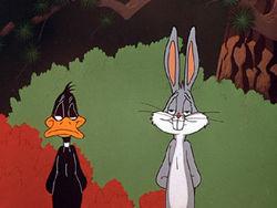 """""""RabbitSeasoning"""""""