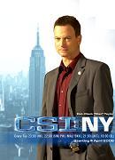 C.S.I. NY, GarySinise