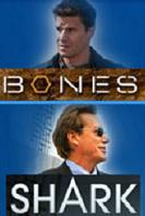 Bones - Shark
