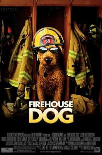 """Firehouse Dog"""