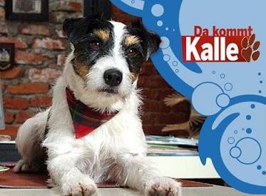 E alla fine arriva Kalle