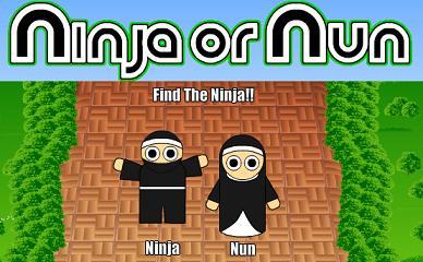ninjaornun