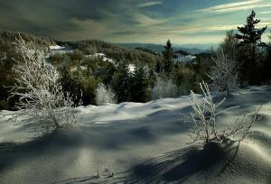 inverno-polacco