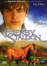 thederbystallion