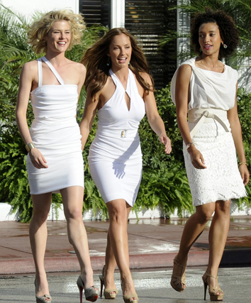 Charlies Angels 2011